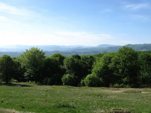 Panorama vestica