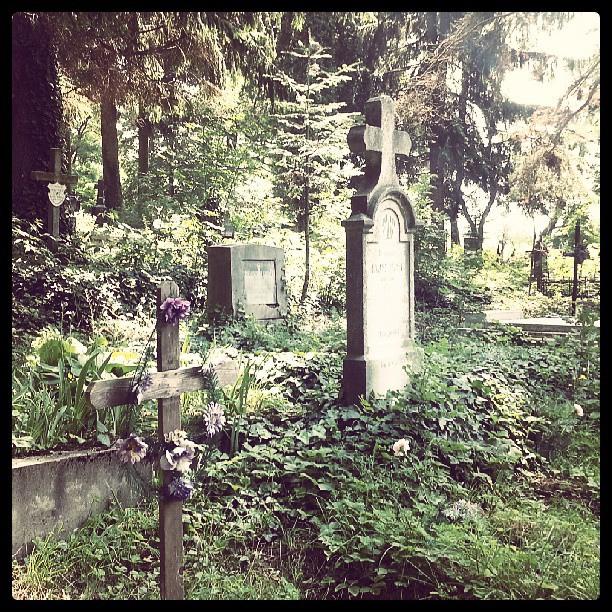 Cimitir Ocna Șugatag
