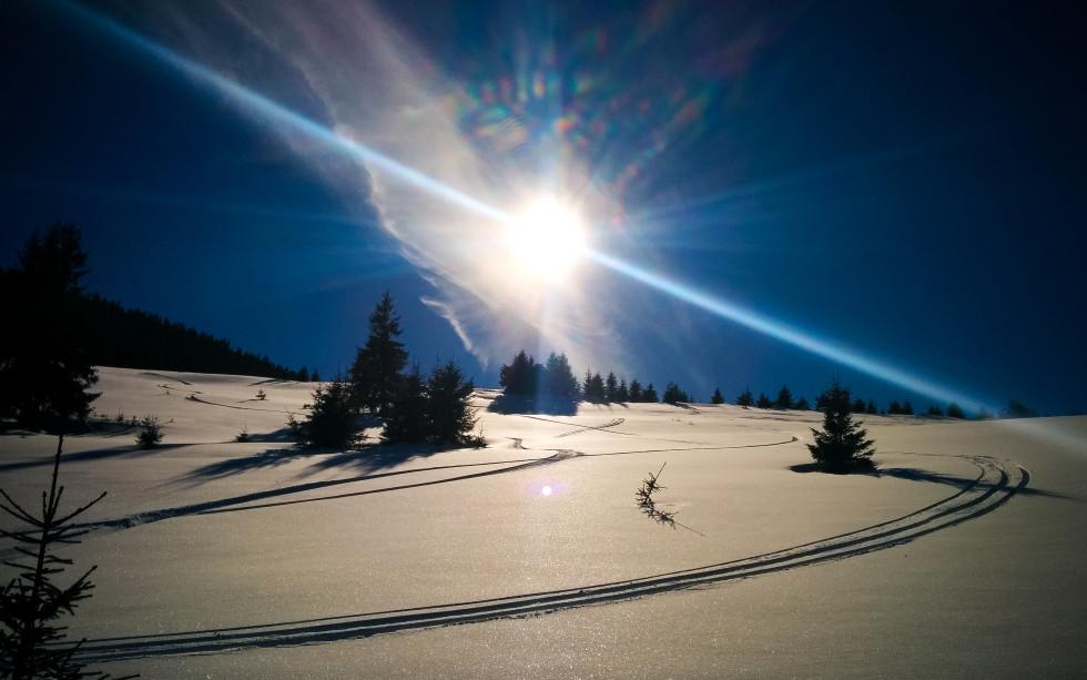 Bârjaba și soarele