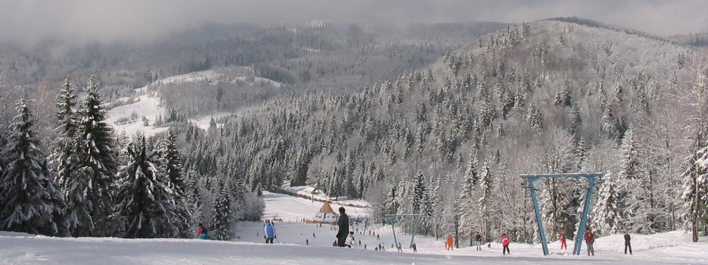 Panorama of the slope at Cavnic
